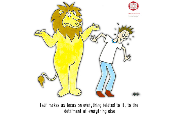Fear Makes Us Focus On Everything Cartoon