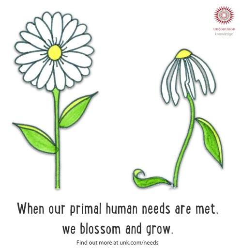 Human Nature Emotional Needs
